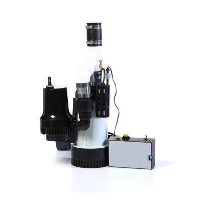 Basement Watchdog Big Combination Sump Pump System