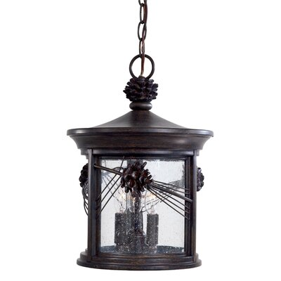 Great Outdoors by Minka Abbey Lane 3 Light Outdoor Hanging Lantern