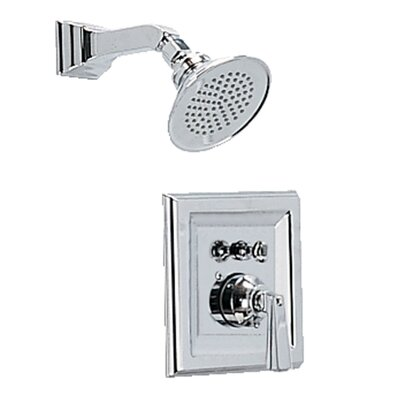 Town Square Volume Shower Faucet Trim Kit with Lever Handle and EverClean Product Photo