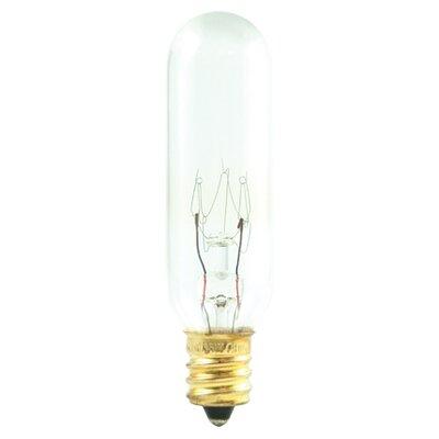 Bulbrite Industries 25W 120-Volt (2700K) Incandescent Light Bulb