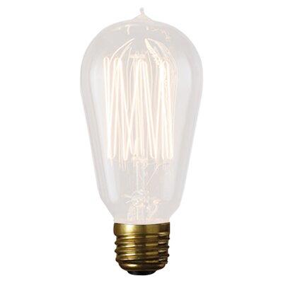 Bulbrite Industries Flynn 60W Incandescent Light Bulb ...