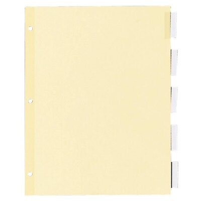 Kleer-Fax, Inc. Recy Insert Ring Book Indexes, 5 Tab, Clear
