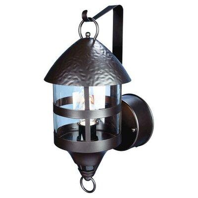 heath zenith motion activated 1 light outdoor wall lantern. Black Bedroom Furniture Sets. Home Design Ideas