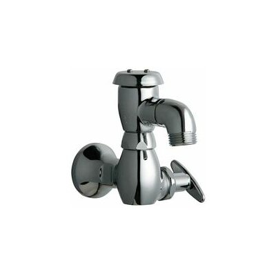 Chicago Faucets Manual Wall Mount Service Sink Faucet with Vacuum Breaker Spout and Loose Key Handle