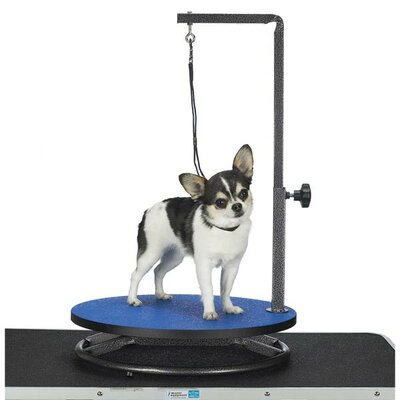 Master Equipment petedgeSmall Dog Grooming Table