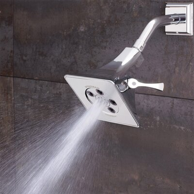 Rainier 5-Jet Shower Head Product Photo