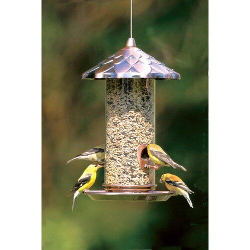 Stokes select acorn seed bird feeder wayfair for Acorn feeder