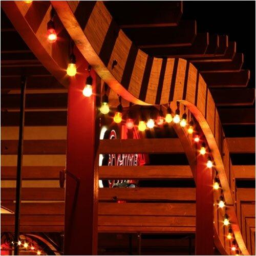 American Lighting LLC Suspended Bulk Reel String Lighting & Reviews Wayfair