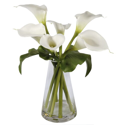 Jane Seymour Botanicals Calla Lilies in Glass Vase