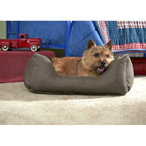 Stainmaster comfy couch pet bed reviews wayfair Comfy couch dog bed