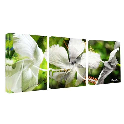 39 wild floral study 39 3 piece wrapped canvas wall art set. Black Bedroom Furniture Sets. Home Design Ideas