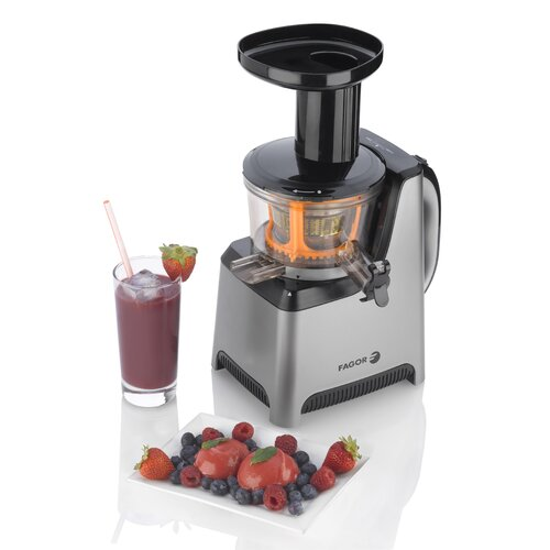 Fagor Slow Juicer Recipes : Platino Slow Juicer and Sorbet Maker Wayfair