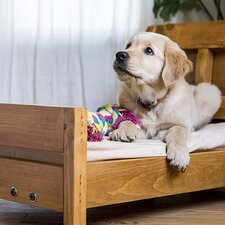 Doggie Dreamland: Pup-Approved Beds