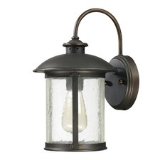 Dylan 1 Light Wall Lantern