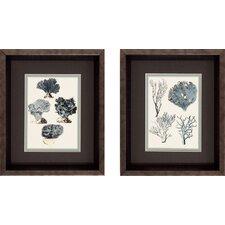 Coral Species Framed Graphic Art (Set of 2)