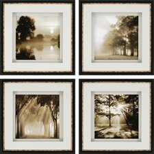 Reflections 4 Piece Photographic Print Shadow Box Set