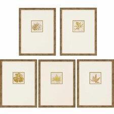 Morphologies 5 Piece Framed Wall Art Set