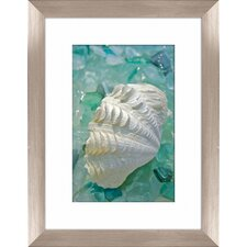 Sea Glass and Shell Framed Photographic Print