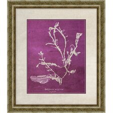 Coral II Framed Graphic Art in Purple
