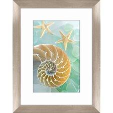 Sea Glass Shells II Framed Graphic Art