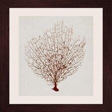 Crimson Coral II Framed Graphic Art