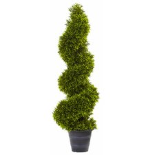 Grass Spiral Round Tapered Topiary in Planter