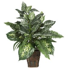 Silk Mixed Greens Zebra Floor Plant in Decorative Vase