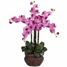Phalaenopsis with Decorative Vase Silk Flowers in Mauve