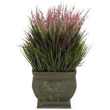 Mixed Silk Grass in Planter
