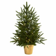 Christmas Tree with Golden Planter and Clear Light