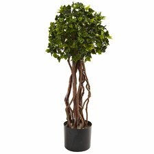 Nearly Natural English Ivy Round Topiary in Pot