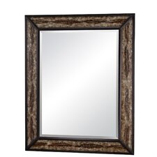 "50"" H x 40"" W Clayton Mirror"