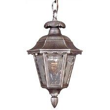 Chesapeake 1 Light Outdoor Hanging Lantern