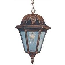 Floral Medium 1 Light Outdoor Hanging Lantern