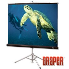 Diplomat Pearl White Portable Projection Screen
