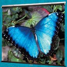 V Screen Matte White Manual Projection Screen