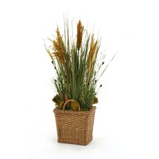 Mixed Grasses, Plumes and Clover Floor Plant in Basket