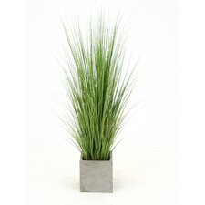 Artificial Mixed Grass in Planter