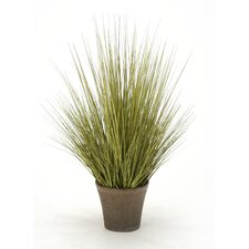 Faux Grass in Pot (Set of 4)