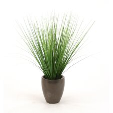 Silk Two-Tone Grass in Pot (Set of 6)