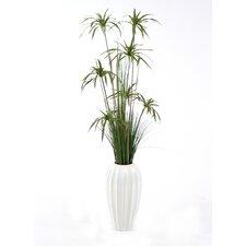 Silk Umbrella Papyrus Grass in Round Tapered Ceramic Vase