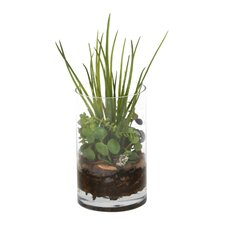 Waterlook® Grass and Succulents with Orchid Bark Desk Top in Pot