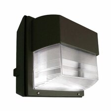 One Light Outdoor Compact Fluorescent Wall Light in Architectural Bronze
