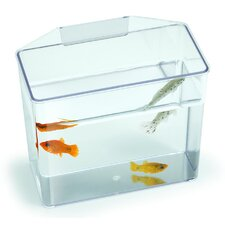 Aquarium Specimen Container Tank