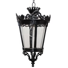 Tuscany 1 Light Outdoor Hanging Lantern