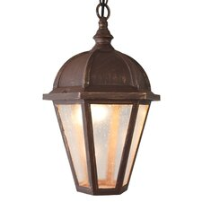 Kiss Series 1 Light Outdoor Hanging Lantern