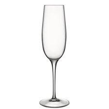 Crescendo Champagne Glass (Set of 4)