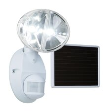 Solar Motion LED Light
