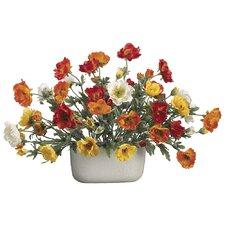 Poppy in Oval Ceramic Container