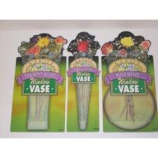 3 Piece Window Vase Gift Pack